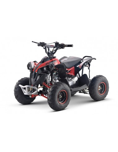 Mini quad 110cc ATV3C